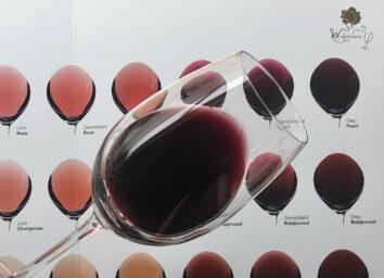 Cursus Wine courses